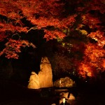 京都の紅葉&ライトアップで今最も美しいと言われている観光スポットBEST3!