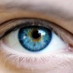 日本人と欧米人の「目に映る世界」は違う!? 欧米人のサングラス着用率が異常に多い理由と他者と仲良くなる方法